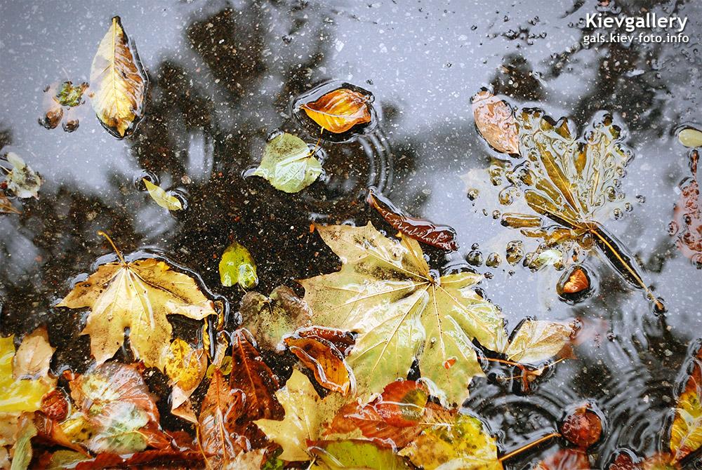 Осенний Киев. Фотографии
