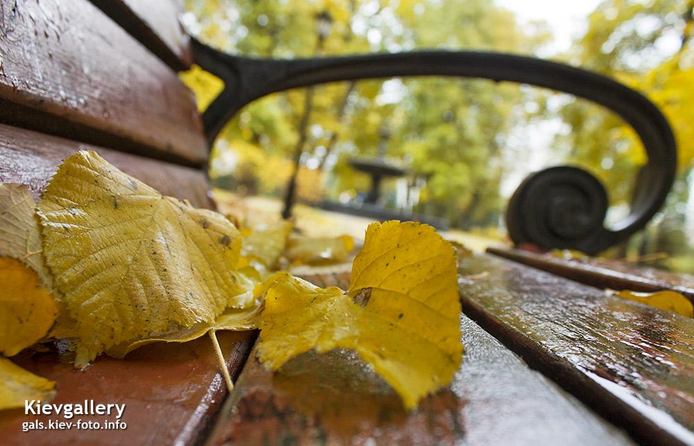 Осенний Киев. Фотографии осеннего Киева