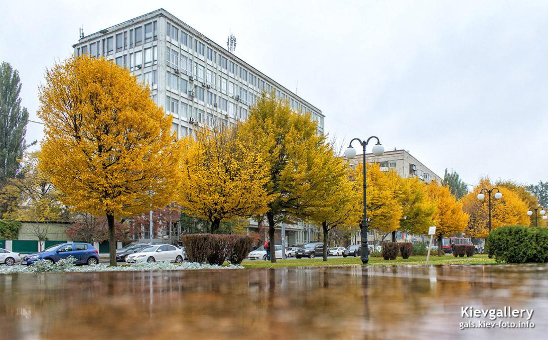 Осень на Севастопольской площади