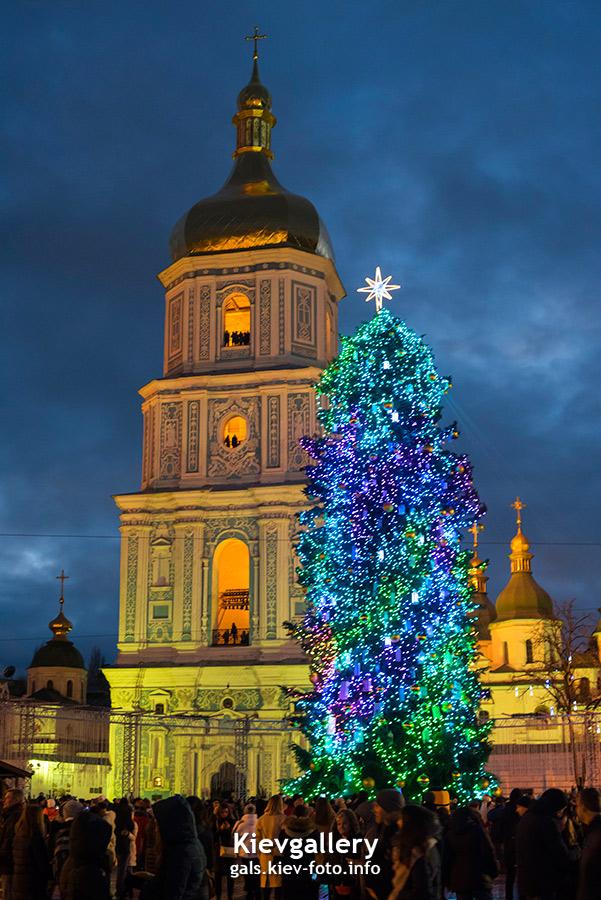 Главная новогодняя елка Киева 2018. фотографии главной елки Киева 2018
