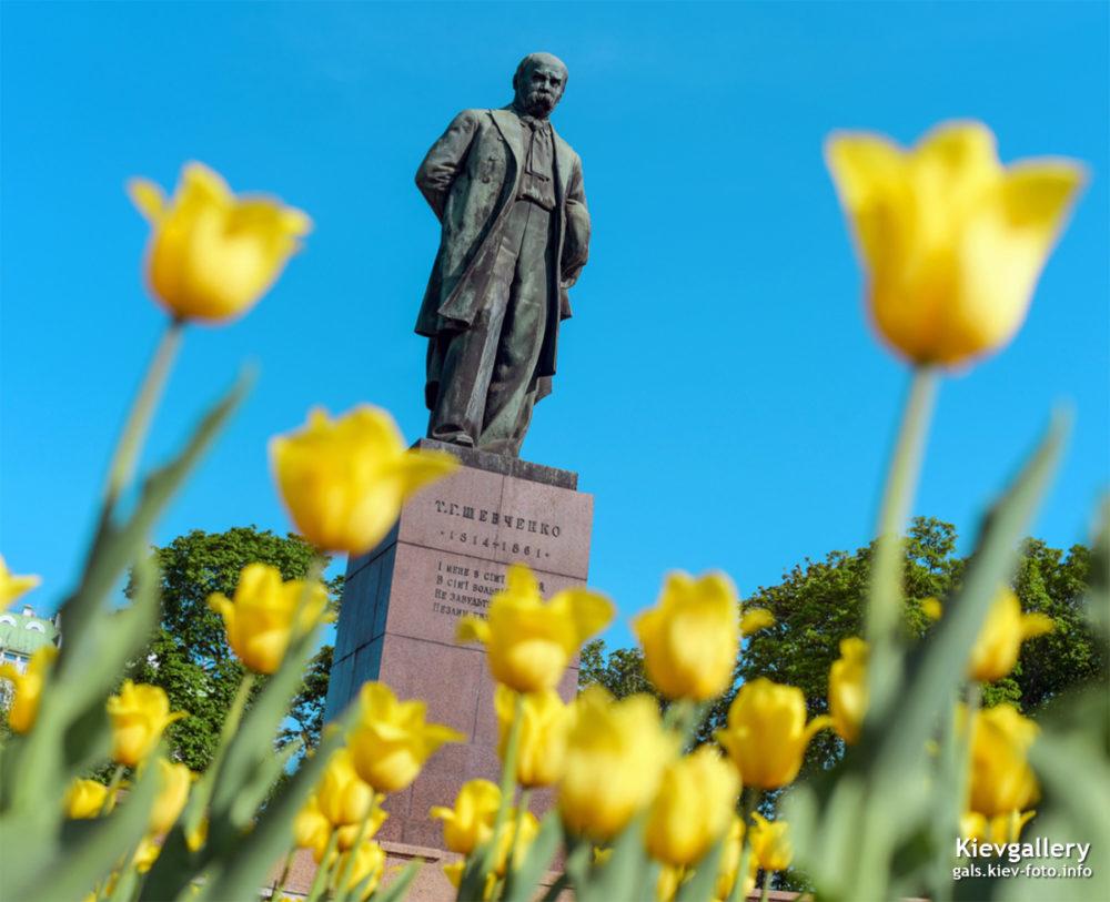 Тюльпаны в парке Шевченко