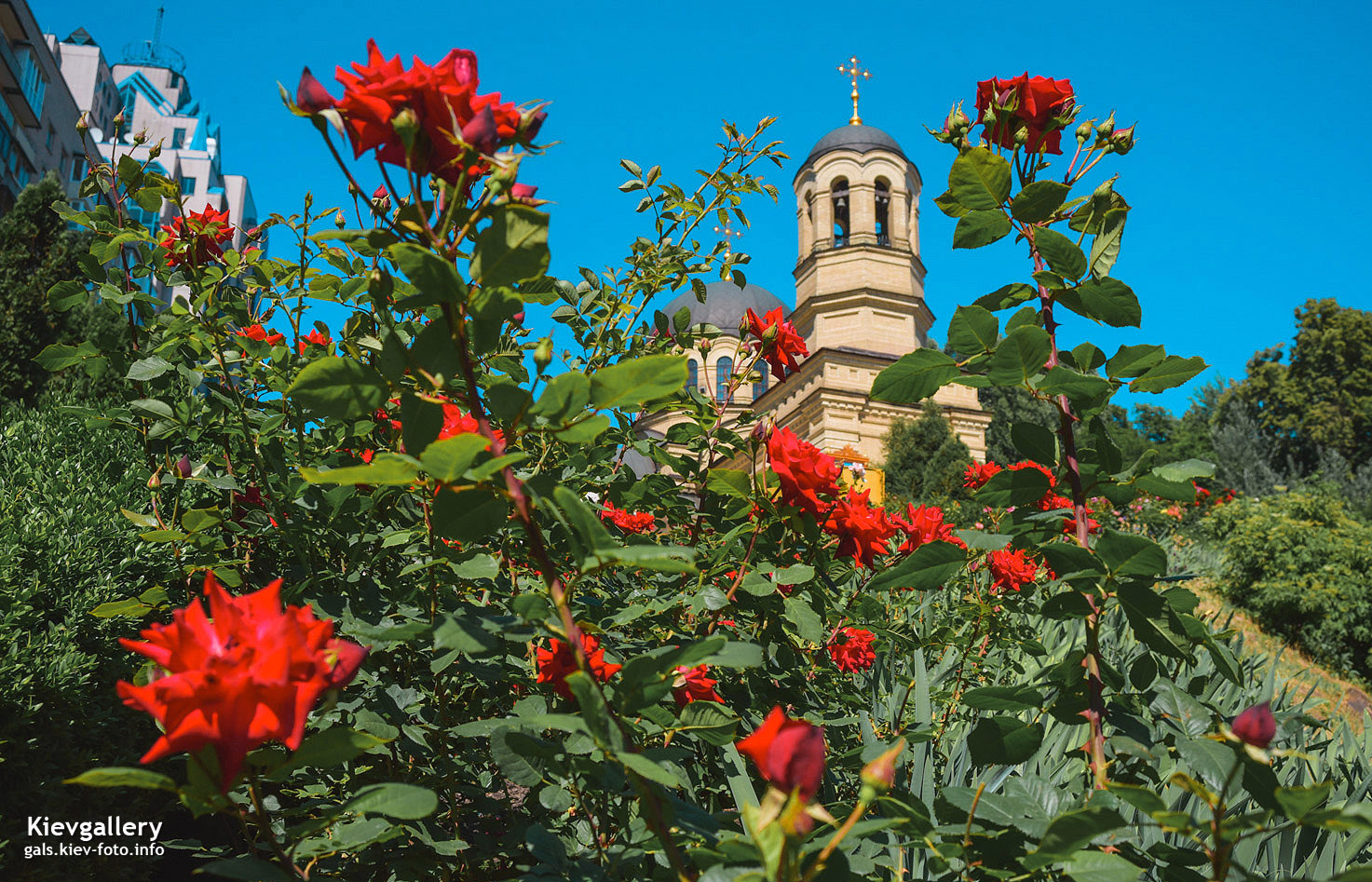 Михайловская церковь в Александровской больнице