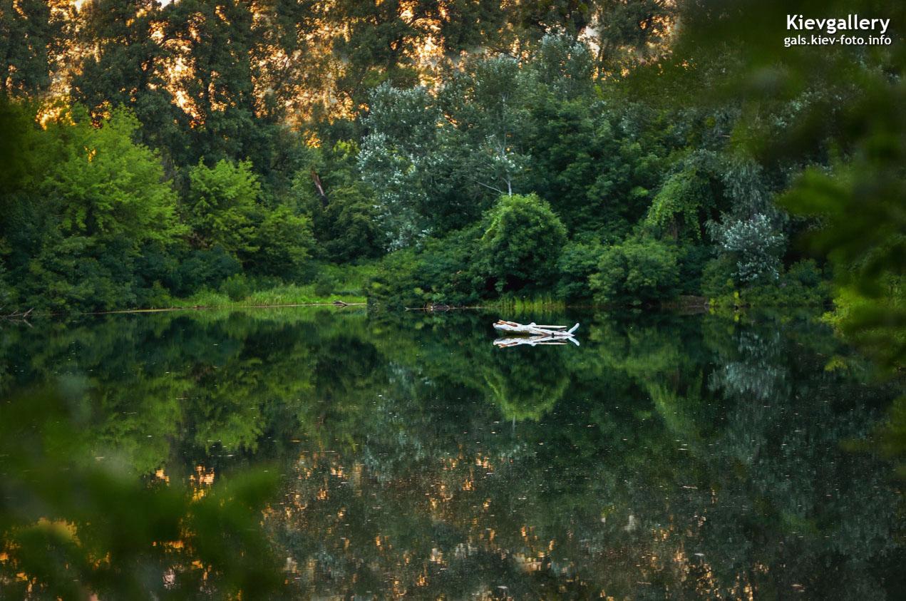 Озеро Березка на Гидропарке