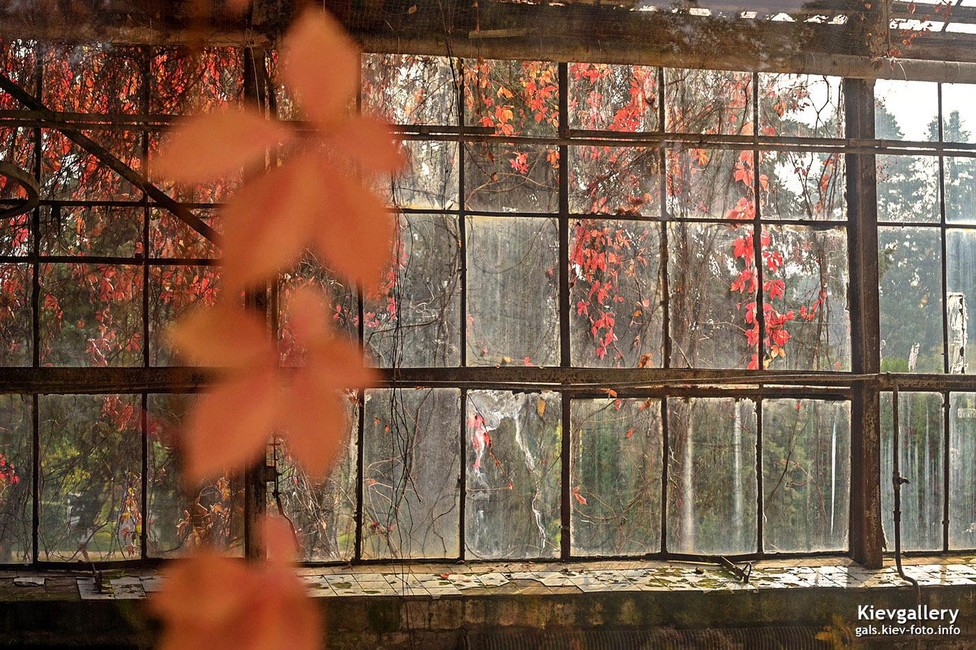 Красная осень на ВДНХ