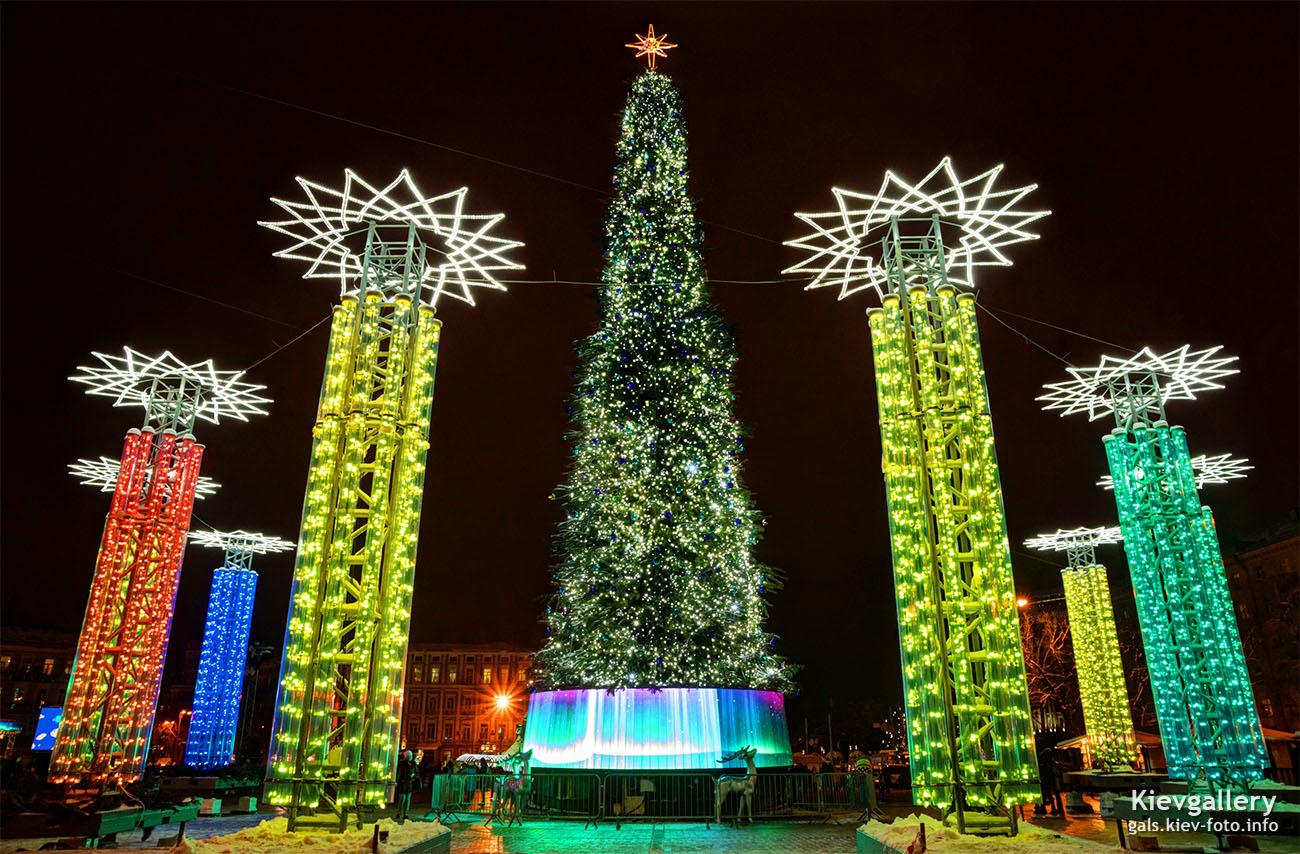 На Софийской площади зажгли главную ёлку страны 2019