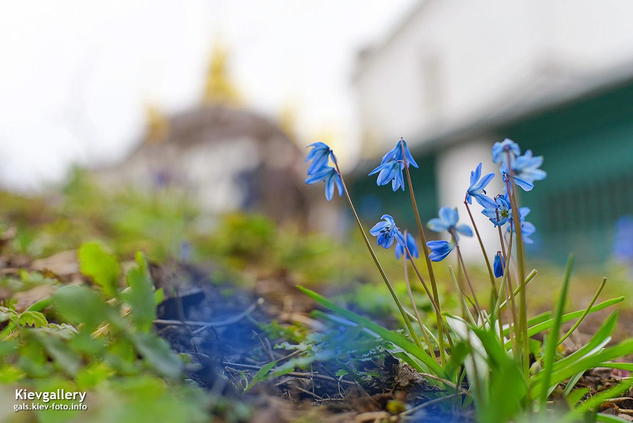 Начало весны в Лавре