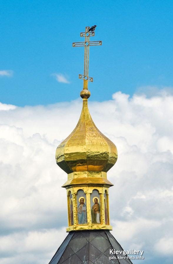 Ворона на куполе Аннозачатьевской церкви