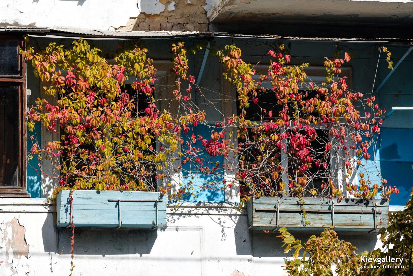 Осенние балконы в Киеве