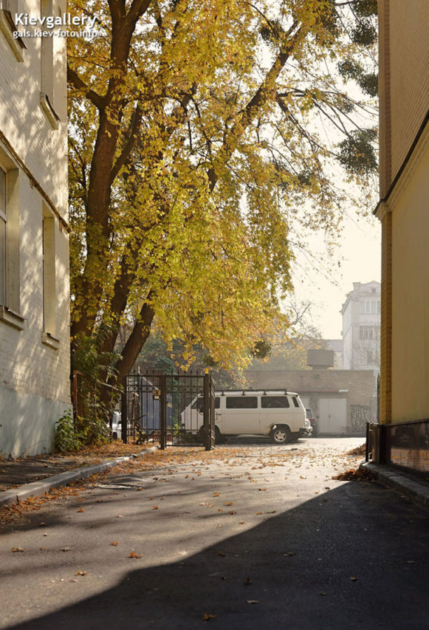 Осенний октябрьский Киев (2019)